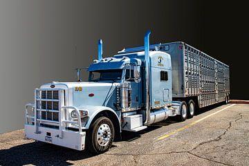 Peterbilt, Amerikaanse vrachtwagen, American Truck van Gert Hilbink