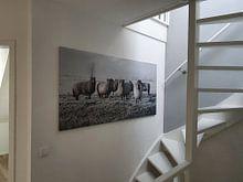 Photo de nos clients: Moutons dans le polder (vu à vtwonen) sur MS Fotografie | Marc van der Stelt, sur toile