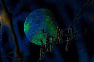 Concept natuur : Hekserij van Michael Nägele