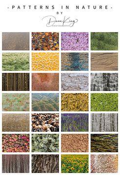 Poster von Mustern in der Natur