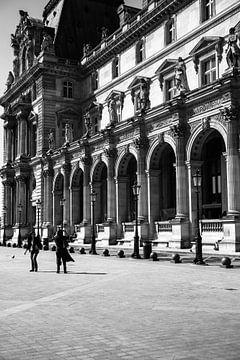 Het Louvre museum van Petra Brouwer