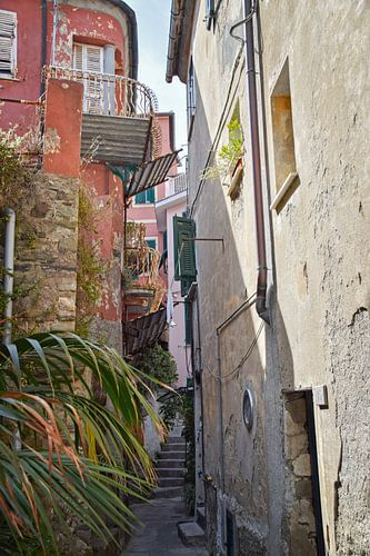 Straatje in Vernazza, Cinque Terre van