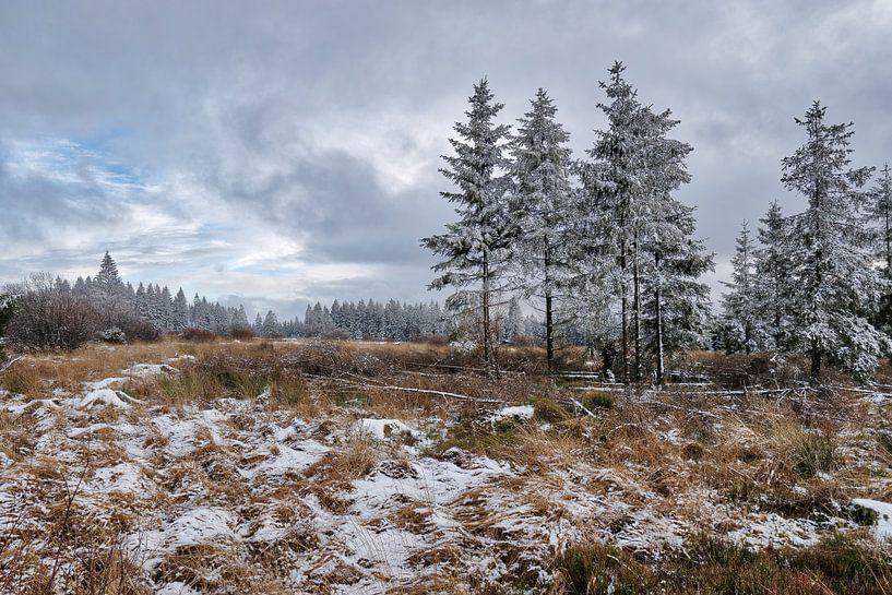Das Winterparadies von Rik Verslype