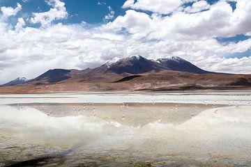 Boliva : hautes montagnes des Andes sur Jelmer Laernoes