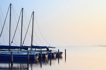 Eerste lente zonnestralen - Leekstermeer, Nederland sur