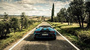 Lamborghini 'Passione Italia' II van Dennis Wierenga