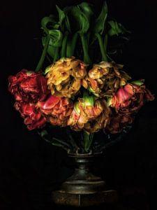 Tulpen von Henk Leijen