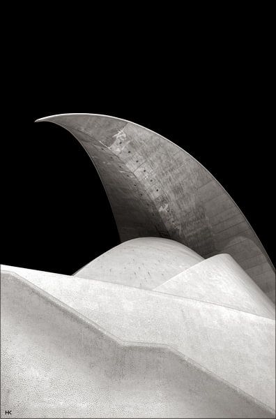 A shark's tooth... van Hans Kool