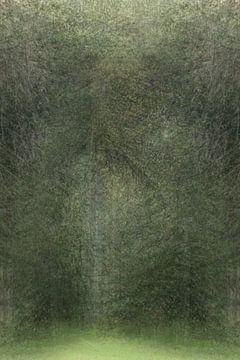Versteckter Eingang Wald von Jacques Willems