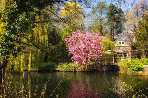 De Leidse Rijn in de lente bij Oog in Al in Utrecht (4) van