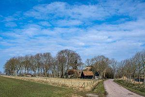 Landschap aan de rand van het Amstelmeer in Noord Holland