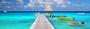 Tropisch panorama met boten aan een steiger