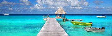 Tropisch panorama met boten aan een steiger van