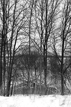 Bomen in de sneeuw grafisch van Edith Wijte