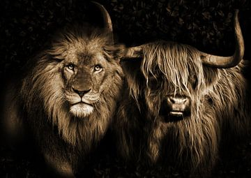 De leeuw en de Schotse Hooglander van Bert Hooijer
