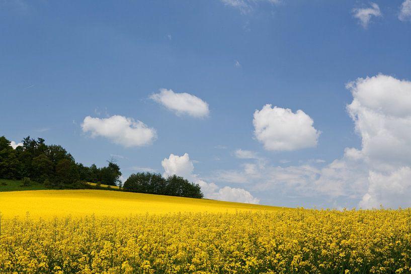 Czech Hills van Ellen van Drunen