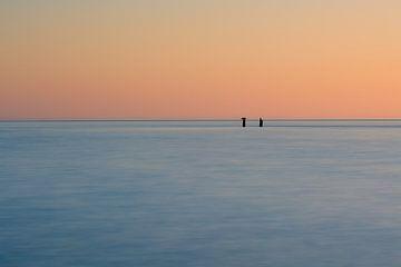 Kormorane am Horizont von Julien Beyrath