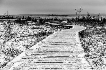 Der Weg zu.... von Jim De Sitter