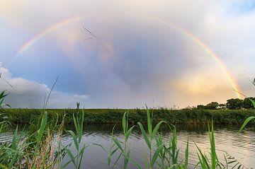 Regenboog van Mark Bolijn