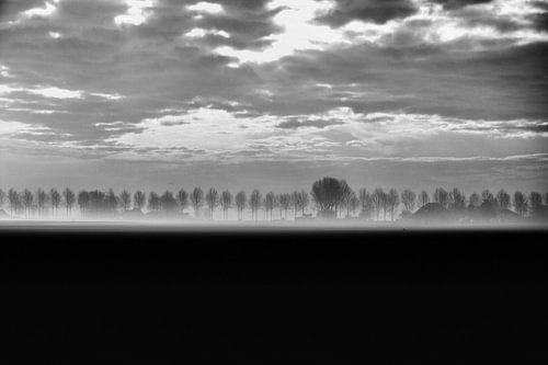 Ochtend Mist 2 - Nieuw-Vennep