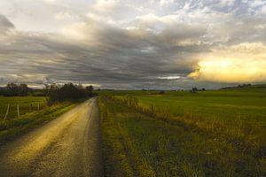 Licht op de weg