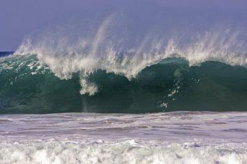 Riesige Welle in der Nordsee in den Niederlanden von Nisangha Masselink