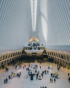 The Oculus NY von Yannick Karnas