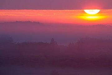 Zonsopkomst boven duinen met mist van Menno van Duijn
