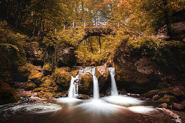 Schiessentümpel Wasserfall in Müllerthal, Luxemburg in Herbstfarben von Chris Snoek