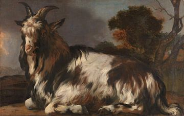 Liegender Geißbock, Jan Baptist Weenix