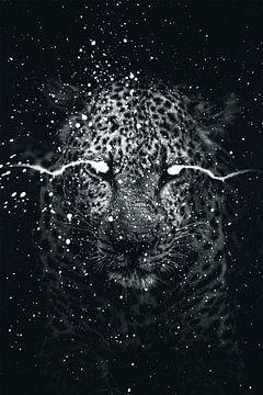 Panther schwarz-weiß von Tom IJmker