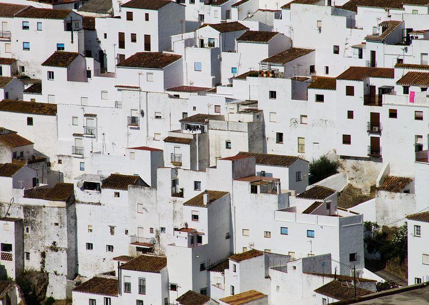 White of Casares