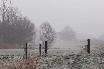 kalter Nebel von Tania Perneel