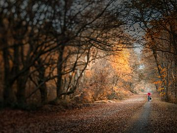 Lonely cyclist von Lex Schulte