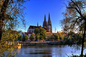 Regensburgse Dom met promenade en Donau van Roith Fotografie