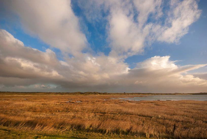 Mokbaai op Texel van Margreet Frowijn