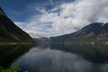 fjord Noorwegen von Geert Groot