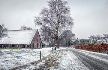 Winter en sneeuw  in Apeldoorn van Patrick Rodink