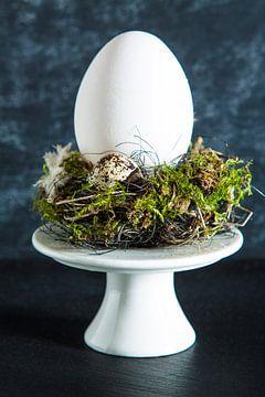 Wit ei in een nestje gepresenteerd op een etagere van Henny Brouwers