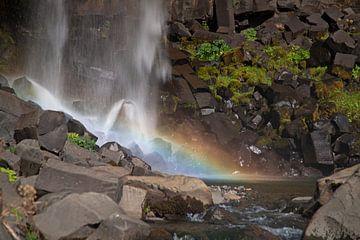 Svartifoss-Wasserfall Island von Menno Schaefer