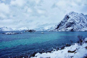 Arktische Landschaft in Norwegen von Anam Nàdar