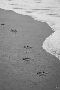 Fußabdrücke am Strand von Photo Julleke