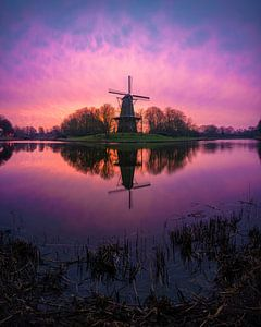 Spring 1 (Seismolen Middelburg) van Thom Brouwer