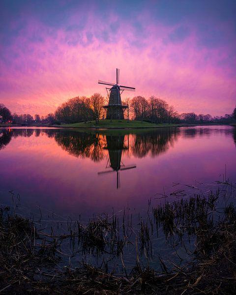 Spring 1 (Seismolen Middelburg) sur Thom Brouwer