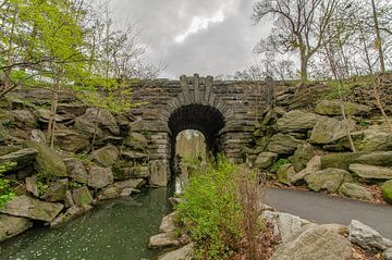 Central Park van EVH Cinematography