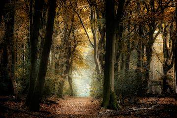 Dans les bois sur Kees van Dongen