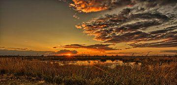 Sonnenuntergang im Geestmoor von Marita Autering