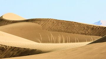 Badain Jaran woestijn (China) von Paul Roholl