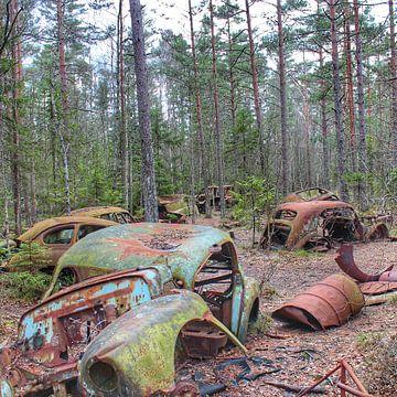 Autowrak in Zweeds bos III van Ron de Regt