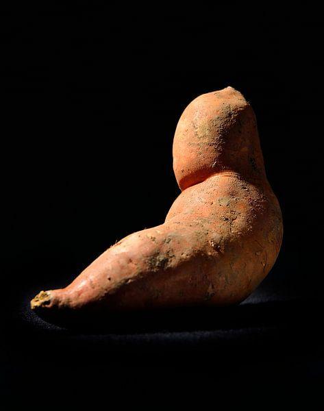 Süßkartoffel von Tom River Art
